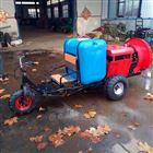 JX-DY柴油自走式风送打药机 三轮手推土豆喷雾器