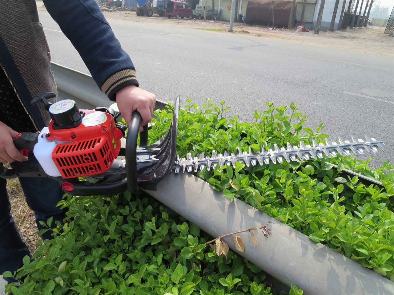 鲜花绿植修剪机 绿篱机质保一年 汽油剪枝篱
