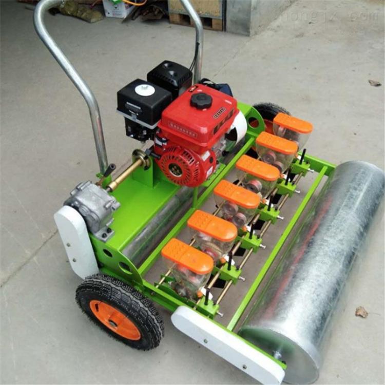 萝卜白菜播种机价格 辽宁药材种植机设备