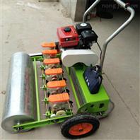 汽油丸粒萝卜播种机 株距可调蔬菜精播机