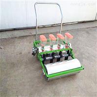 蔬菜花卉精量播种机 免间苗精播机厂家