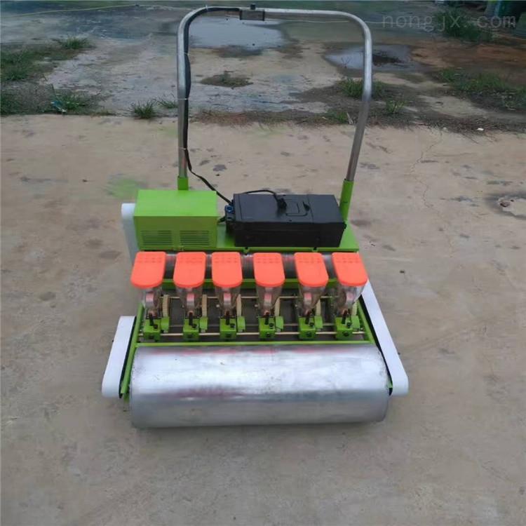 白菜油菜辣椒播种机 韭菜精播机