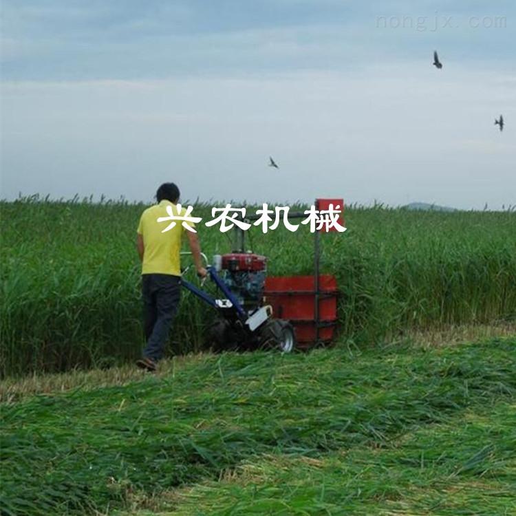 手扶黄豆水稻小麦收割机价格