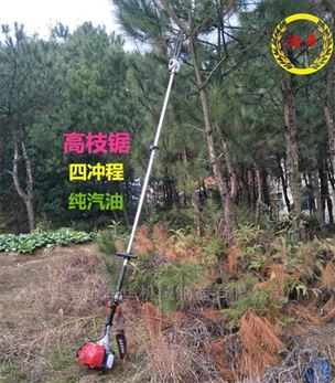 轻巧多功能汽油高枝锯 园林机械树木修剪机