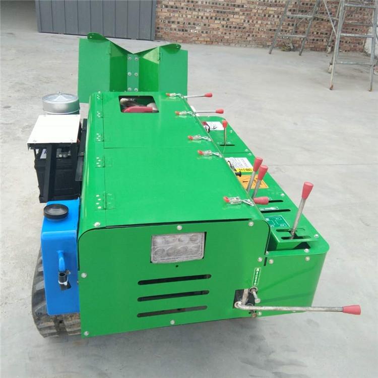 履带施肥机厂家 大棚旋耕机 柴油履带开沟机