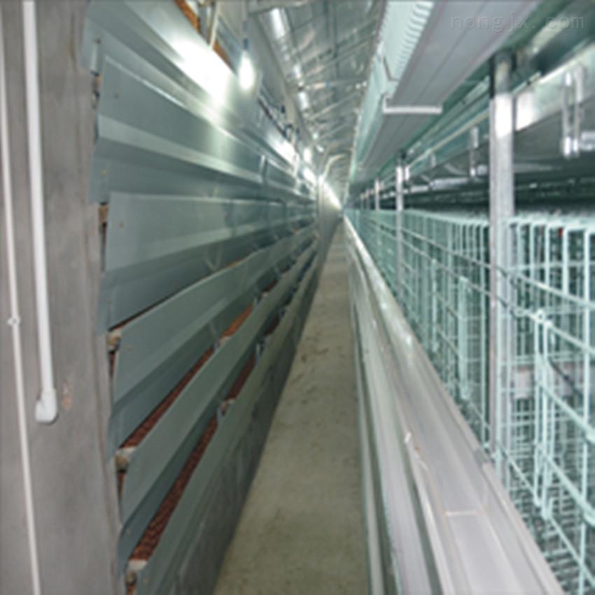中州蛋鸡笼 肉鸡笼育雏笼小鸡笼 各种型号