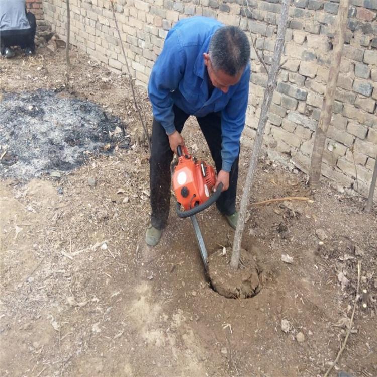 铲大树移栽机 树木移植机 苗木挖树机
