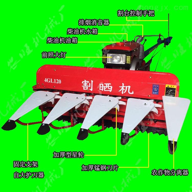 牧草水草水稻小型收割机手扶式稻麦割晒机