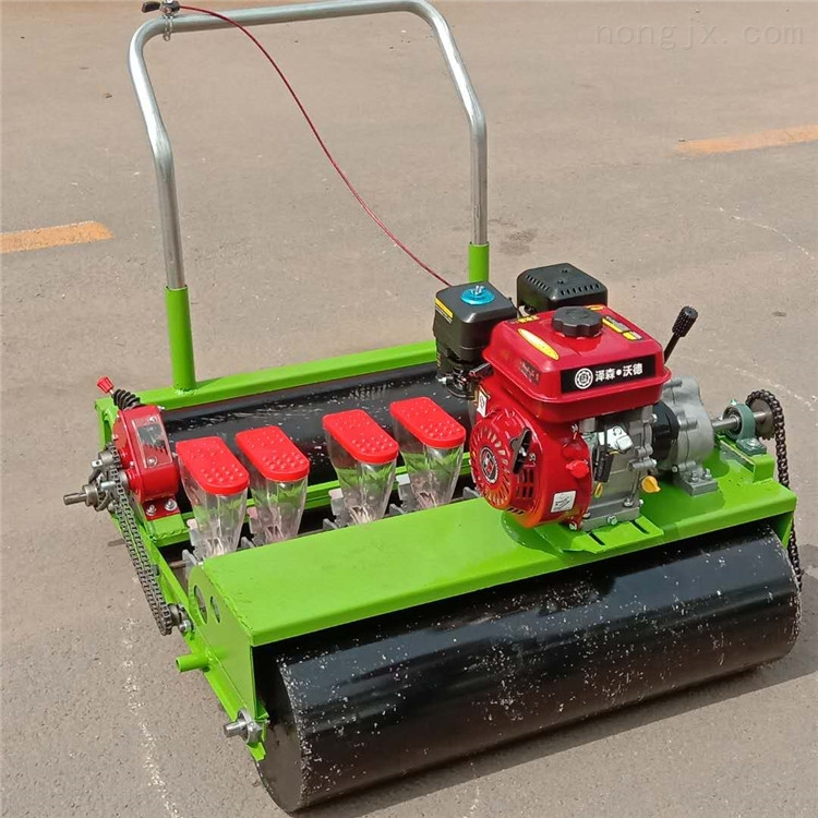 RZ-BZ-萝卜播种机 汽油机蔬菜精播机 菜种子种菜机