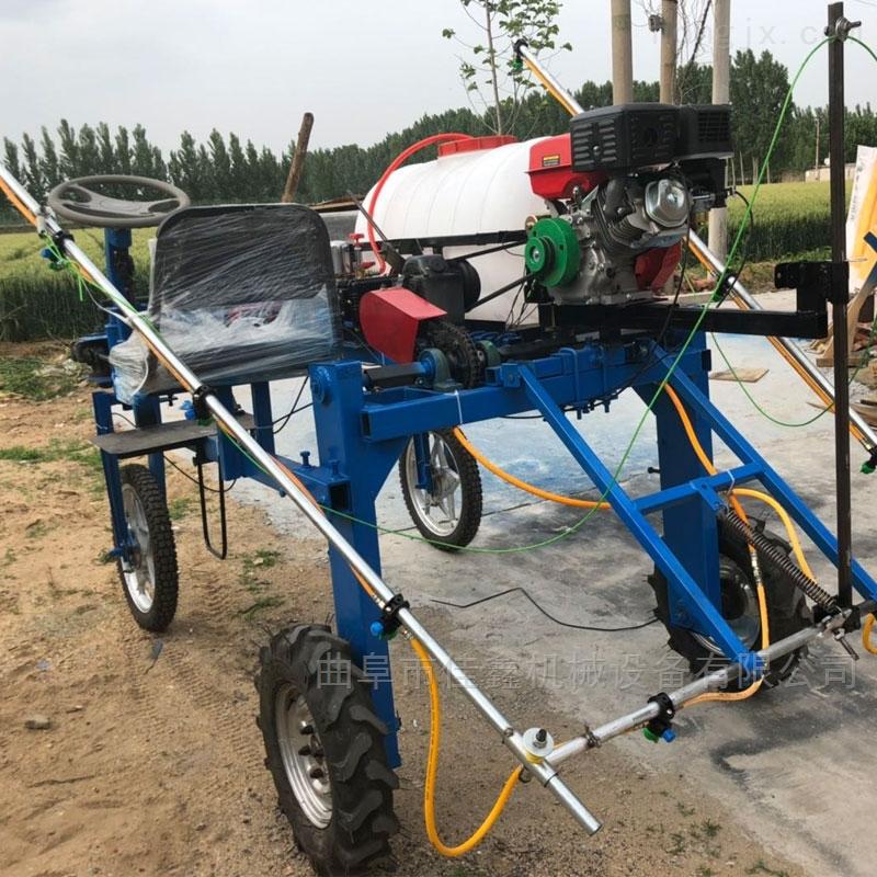 蔬菜基地農田打藥機 手推自走式打藥噴霧機