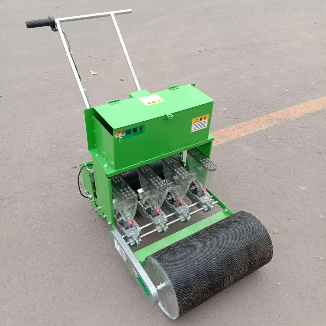 电动5行蔬菜播种机 株距可调的油菜种植机