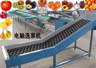 猕猴桃选果机使用方便的机器