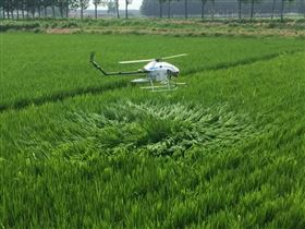 CD-15农用yao控pen洒植保直升机