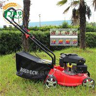 农用园林汽油割草机 手推式公园草坪机