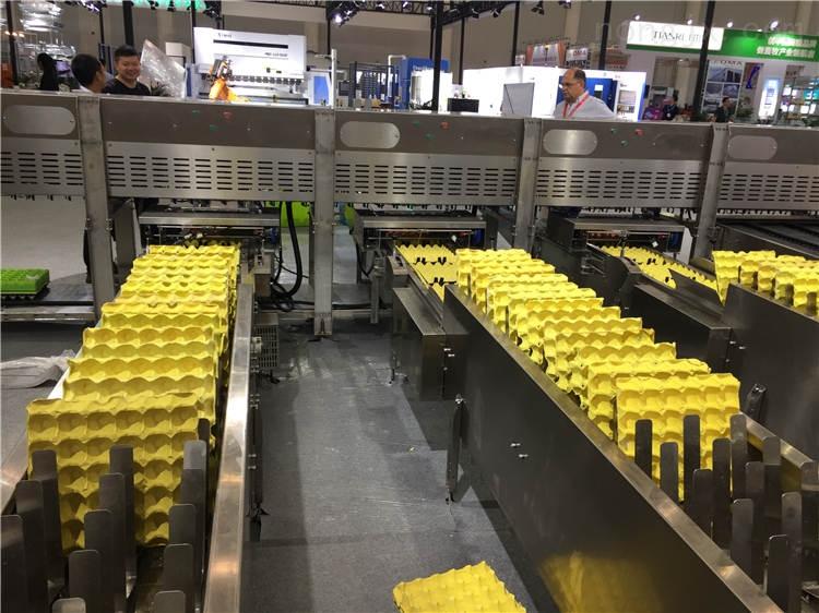 肉鸡笼 商品鸡笼  小鸡笼制造企业