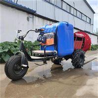 果园葡萄园杀虫打药车 柴油风送喷雾器