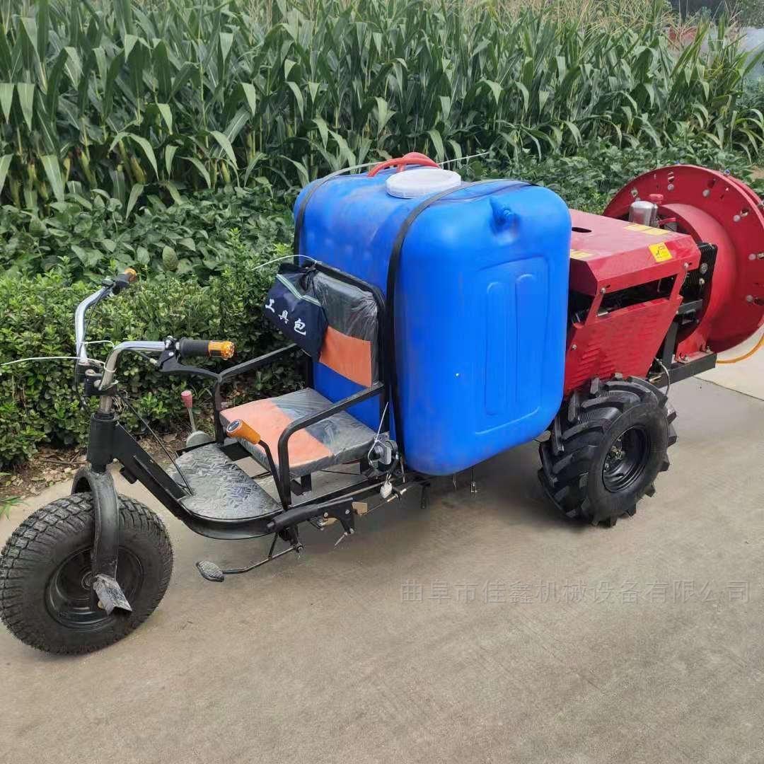 溫室大棚打藥機價格 柴油手推式噴霧器
