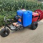 JX-DY温室大棚打药机价格 柴油手推式喷雾器