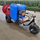 JX-DY自带档位座驾高压喷雾打药机 手推打药车