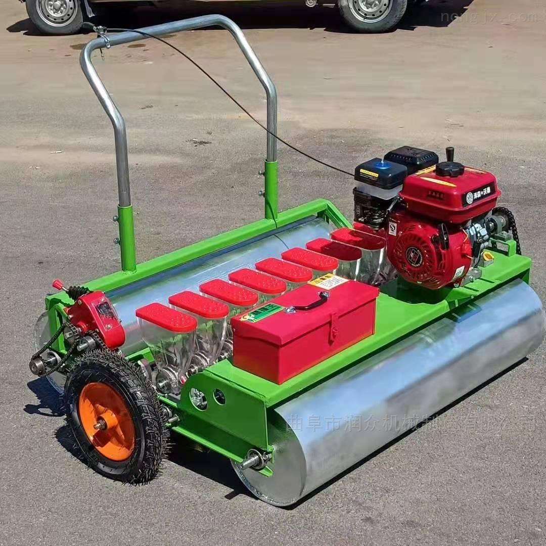 电动小型蔬菜种植机 香菜芹菜精量播种机