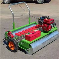手推式芥菜播种机 农用多功能种菜机价格