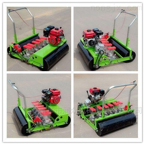 小粒青菜种子播种机 自走式汽油大葱种植机