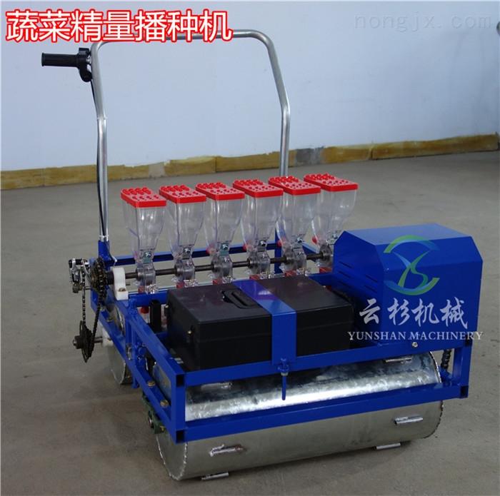 电动自走式蔬菜播种机