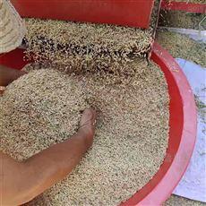 SL TLJ大型稻麦脱粒机柴油流动加工谷子大豆打粒机