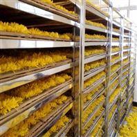 鲜花烘干机内江中联热科空气能干燥箱房