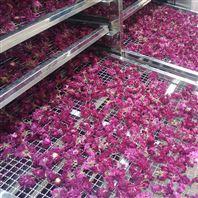 玫瑰花干燥过程需要注意的一项及烘干优势
