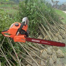 SL WSJ大马力合金链条起苗挖树机