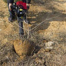 SL WSJ农用汽油挖树机多功能起苗机