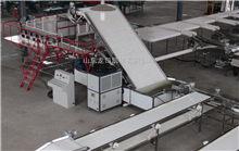 6XY-3新型国外大樱桃选果机包装机