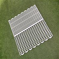家禽用塑料漏糞板