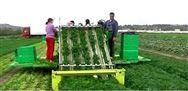 推进果蔬生产机械化,助力全省脱贫攻坚