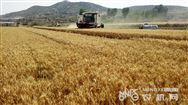 夏季农机保养小常识