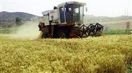 吉林省关于2019年第二批次农机购置补贴产品分类归档情况公示的通知
