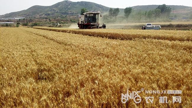 海南省2019年家庭農場發展項目實施方案