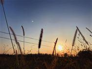 吉林省永利皇宫官网对河南宏旭农业机械有限公司补贴产品进行联动处理的通知