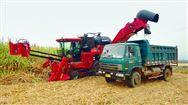 【看圖】我國甘蔗收獲機呈智能、全面多樣化發展