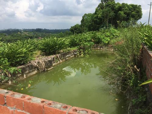 山东省部署十七项水产养殖业绿色发展任务