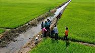 硕士飞防记:让越南农户用上植保无人机