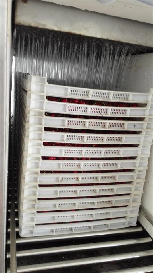 樱桃为什么需要预冷 樱桃预冷机的好处与优点